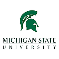 Michigan State Helmet logo
